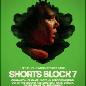 FilmQuest18-Block8
